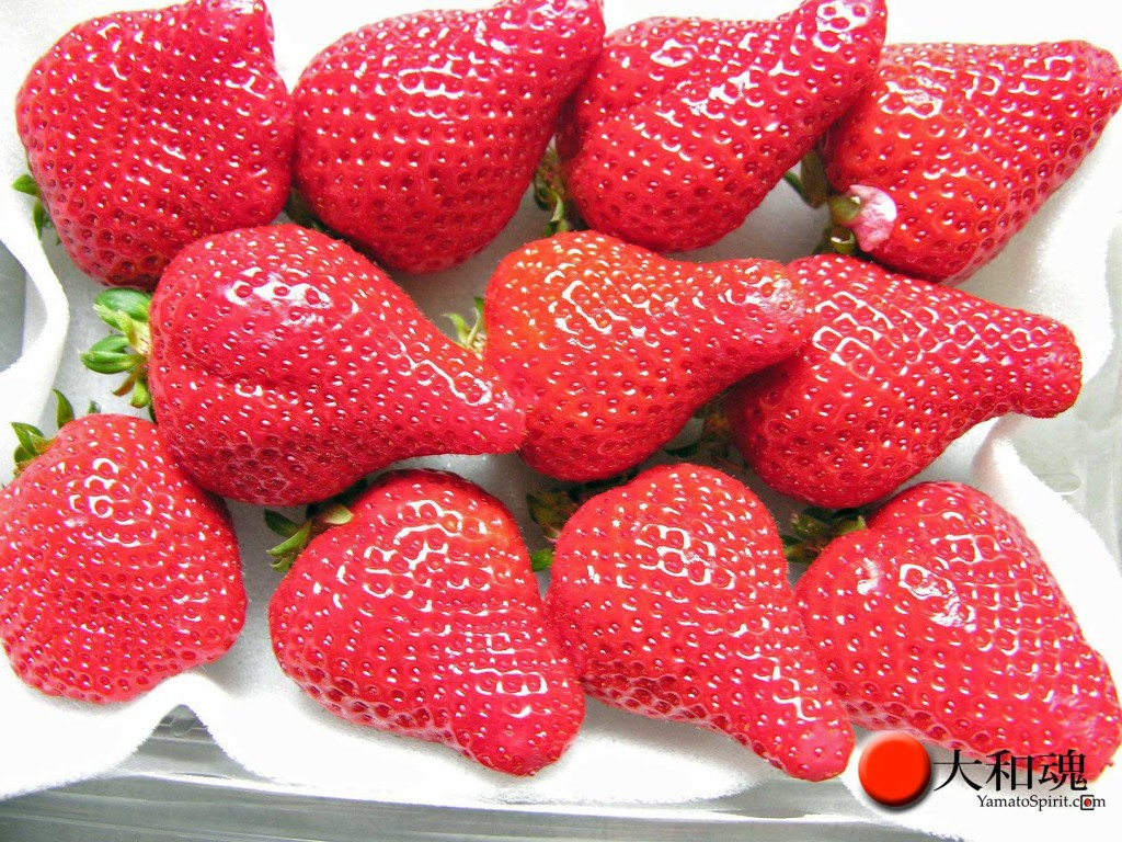Amaou strawberries, fresh from Fukuoka prefecture